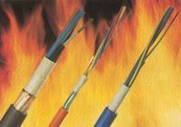 铠装通信电缆系列产品推荐购买图片