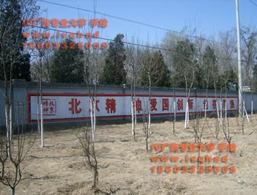 北京大字彩绘古建围挡粉刷图片/北京大字彩绘古建围挡粉刷样板图 (4)