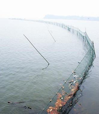 供应沅江哪里批发渔具,沅江哪里批发渔具便宜