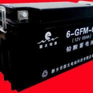 12V贫液式阀控密封铅酸蓄电池图片