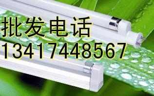 供应深圳T5节能灯厂家,深圳T5节能灯生产厂家