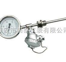供应带热电偶/热电阻双金属温度计