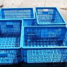 供应农产品塑料箱筐