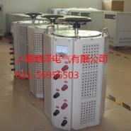 TDGC2接触式调压器图片