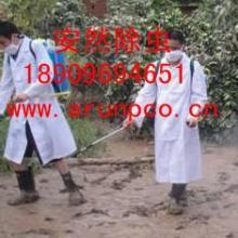 供应专门除虫公司
