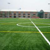 供应福建足球场