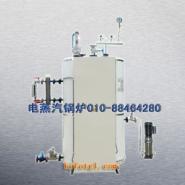 北京12千瓦24千瓦电蒸汽发生器图片