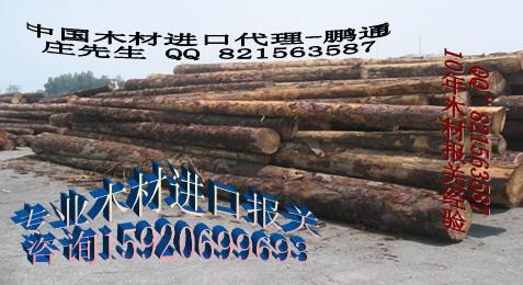 供应代理木材全包进口图片