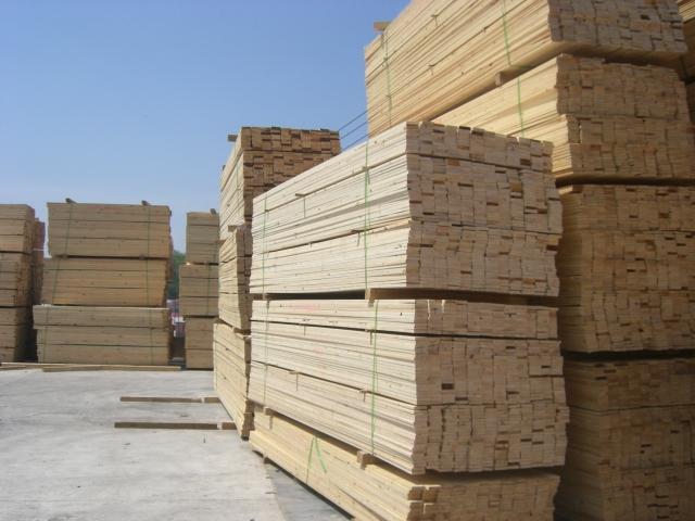 供应东欧木材进口图片