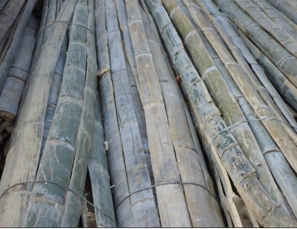 供应优质二米片木材加工供应供应2.2米菜架竹