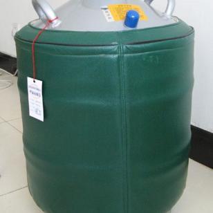 石家庄贮存式液氮容器图片