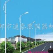 12米单臂道路灯图片