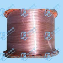 供应铜包钢接地绞线图片