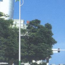 天津灯杆,单臂路灯杆,庭院灯杆,自产自销!