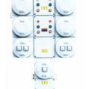 BXQ52系列防爆电磁起动配电箱图片