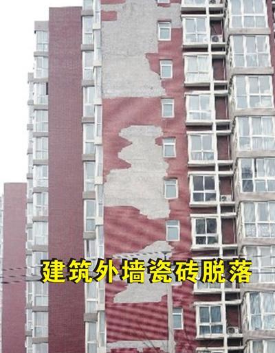 供应梅州瓷砖胶揭阳瓷砖胶汕头瓷砖胶潮州瓷砖胶