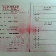 秦皇岛焦炭滤料规格图片