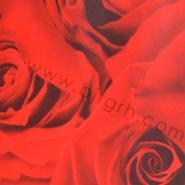 北京奥弗雷特壁纸批发零售版本齐全图片