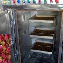 金银花微波箱式干燥设备