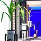 供应全自动高通量植物3D成像系统Scanalyzer3D产品德国