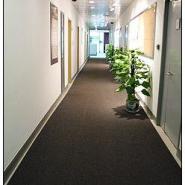 3M酒店3M4000地毯型地垫图片