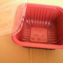 供应盖饭盒
