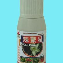 辣椒专用品-辣繁星;防三落、治病毒