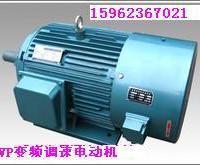 供应YVP系列变频调速电机
