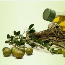 供应家庭烹饪橄榄油