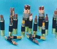 供应普通高压电缆价格、架空电缆