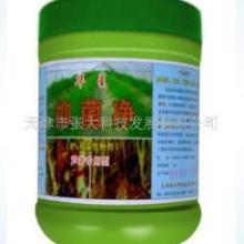 供应藻类产品如何消毒