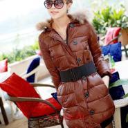 2011冬装女装最时尚的棉衣批发图片