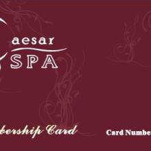 供应会员卡/会员卡直接厂家/会员卡制作/超市会员卡/服装会员卡批发