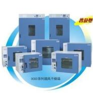 供应上海一恒鼓风干燥箱DHG-9015A