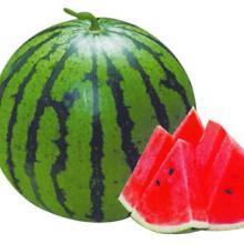 供应有机生态基质栽培西瓜技术