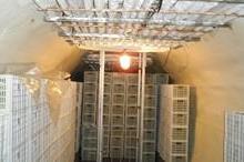 真空设备 真空设备价格 真空设备厂家-山东亮鲜科技