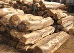 供应越南木方进口清关图片