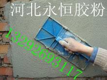 供应优质腻子胶粉