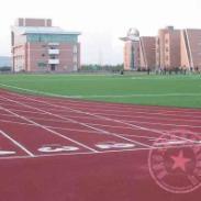 重庆学校篮球球场施工图片
