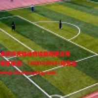 合川区人造草坪什么价格,重庆九龙坡区足球场人造草坪,重庆江津区哪里有生产厂家 图片|效果图