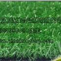 合川区绿色环堡人造假草坪图片