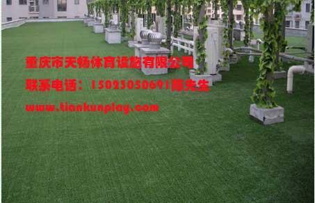重庆塑胶草坪厂家销售