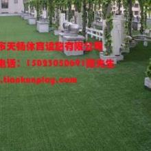 供應沙坪壩區幼兒園人造草坪,重慶人造草坪鋪設,重慶人造草坪廠家直銷批發