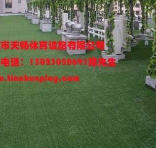 重庆武隆县人造草坪图片