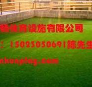 重庆涪陵区屋顶绿化人造草坪图片