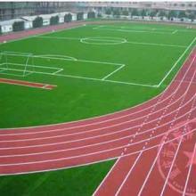 供应忠县硅PU篮球场建设,重庆羽毛球场场地施工,南川区篮球架多少钱一个批发