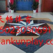 重庆室内PVC羽毛球场图片