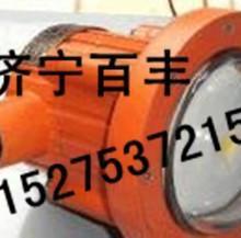 供應DGS12/127L冷光源巷道燈批發