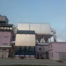 供应锅炉专用布袋除尘器 电厂除尘器高效除尘环保设备