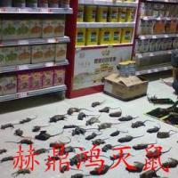 桂林汽车4S店如何灭鼠